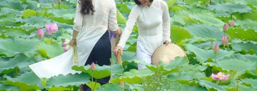 Thau rửa bể nước ăn tại quận Hà Đông
